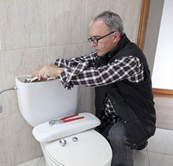 toilet repair experts